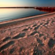 Beach and dock along shore of Lake Winnipeg — 图库照片