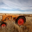 Tumbleweeds piled against abandoned tractor — Stock Photo