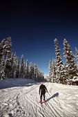 Cross country skier enjoying the winter — Stock Photo