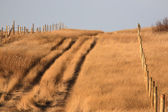 Prairie trail in autumn — Stock Photo