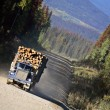 Stock Photo: Approaching logging truck in beautiful British Columbia