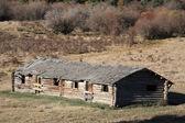 Gamla övergivna saskatchewan gård buidlings — Stockfoto