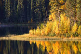 Water reflection at Jade Lake in Northern Saskatchewan — Foto Stock