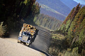 Approaching logging truck in beautiful British Columbia — Stock Photo