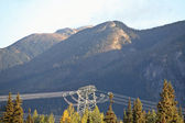 Hydro Tower and Power Lines in Pine Pass of British Columbia — Stock Photo