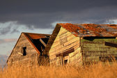 Deliapidated farm granaries in scenic Saskatchewan — Stock Photo