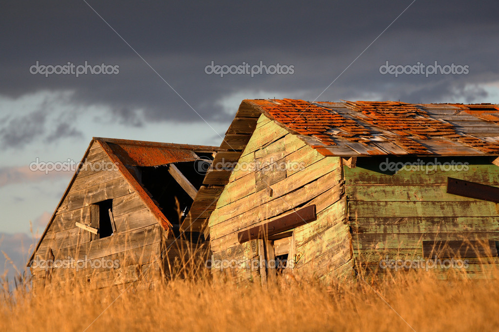 Deliapidated  farm granaries in scenic Saskatchewan  Stock Photo #5209198