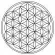 The Flower of Life — Imagen vectorial