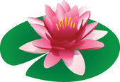 Illustration of a floating pink lotus — Stock Vector