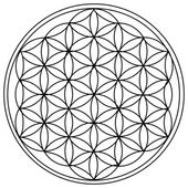 The Flower of Life — Vector de stock