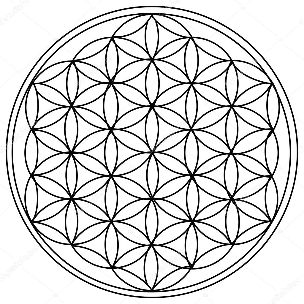 The Flower of Life is the modern name given to a geometrical figure composed of multiple evenly-spaced, overlapping circles.  Stock Vector #4763872