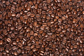 Coffe beans backround — Stock Photo