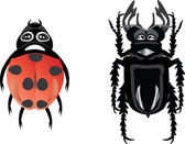 Beetles — Stock Vector