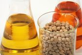 Ethanol oil and fuel produce by soy seeds — Foto Stock