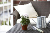 Potted plant, shovel and watering can on tabletop — Stock Photo