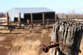 Rusty nail in wood fence post — Stock Photo