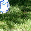 Soccer ball in grass — Stock Photo #4897858
