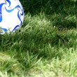 Stock Photo: Soccer ball in grass