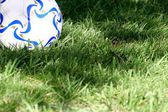 Soccer ball in grass — Stock Photo