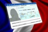 французское гражданство (женщина) 1 — Стоковое фото