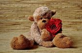 Plush monkey with a rose — Stockfoto