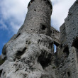 Ruins of the castle in Poland — Stock Photo #4688729