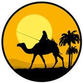 Desierto, puesta del sol y el camello — Vector de stock