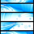 Winter banner, vector — Stock Vector #5107104