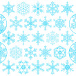 Set of decorative snowflakes, vector — Stock Vector #5351138
