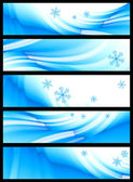 Winter banner, vector — Stock Vector