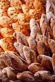 Rows of various bakery products — Stock Photo