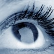 Beauty Eye — Stock Photo #5194210