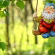 Garden dwarf — Stock Photo #5257163