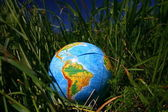 Globe in grass — Stock Photo