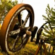 Stock Photo: Old wooden wheel standing with grass & trees background.jpg