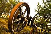 Old wooden wheel standing with grass & trees background.jpg — Stock Photo