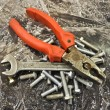 Combination pliers wrench bolts — Stock Photo #4978672