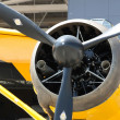 Stock Photo: Army Co-operation single engine Westland Lysander III aircraft, front part