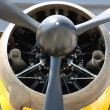Bristol Mercury XX(X) 870 hp engine and propeller of Army Co-operation sing — Stock Photo