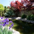 Part of Japanese Garden with the pond view. — Stock Photo