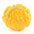 Yellow pebbled skin squash. — Stock Photo #4733672