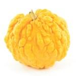Yellow pebbled skin squash. — Stock Photo