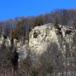 Cliff of Niagara Escarpment . — Stock Photo