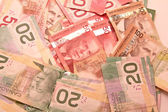 Canadian dollar notes — Stock Photo