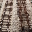 Railroad tracks — Stock Photo #4773022