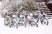 Bikes after the snowstorm. — Stock Photo