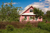 Countryside house. — Stock Photo