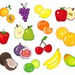 Fruits — Stock Vector #4755831