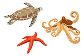 Turtle, octopus and starfish — Stock Vector
