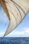 Plachta a moře — Stock fotografie